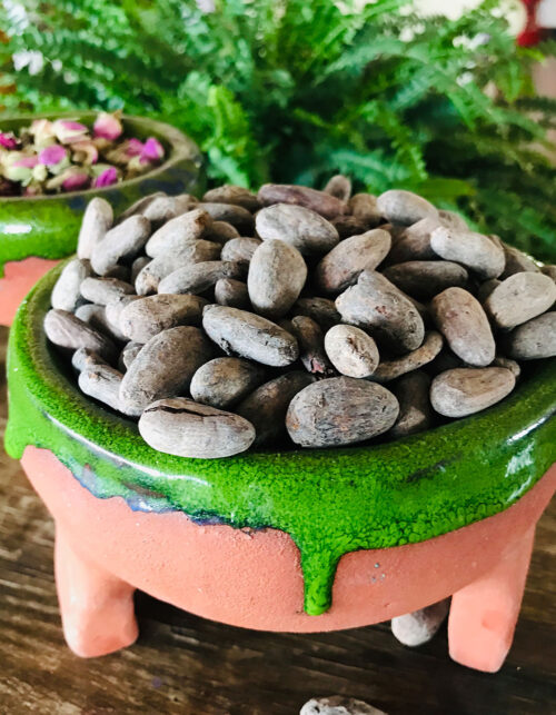 ham-kakao-cacao-people